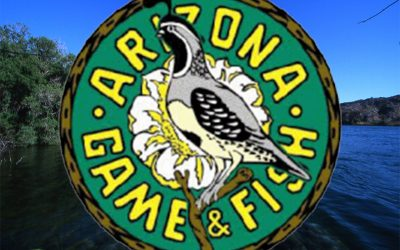 Arizona Game And Fish Commission Applications Are Open