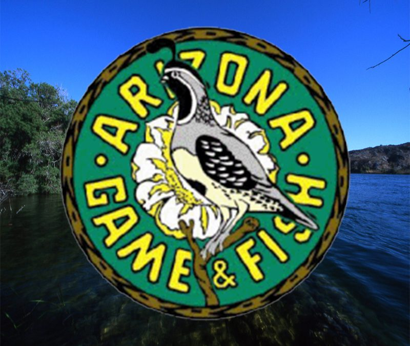Arizona Game and Fish Offers Grant Money To Improve Public Boating Facilities