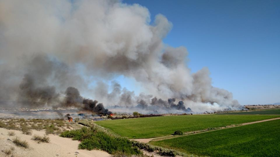 Gemini Fire 100 Percent Contained; Human Cause Suspected