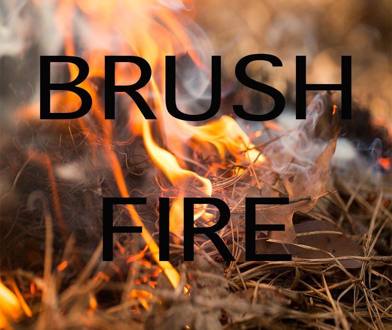Blazing Brush Fire