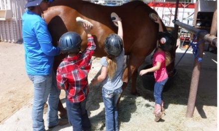 BUZZ Mag ~ feature story: Kingman's Healing Hooves
