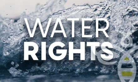Arizona Water Resources Director Called On For Action