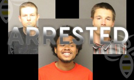 Suspects Arrested in Gator and Club Car Theft