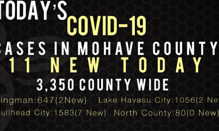 11 New COVID-19 Cases