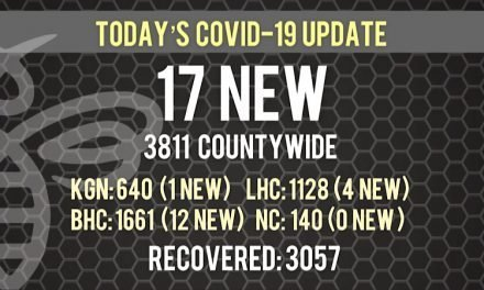 17 New COVID-19 Cases