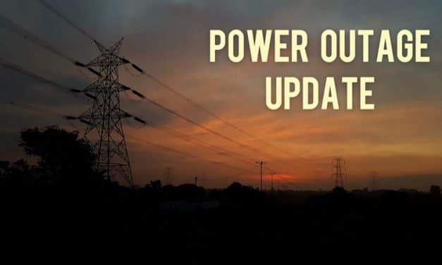 Wildlife Leads to Outage