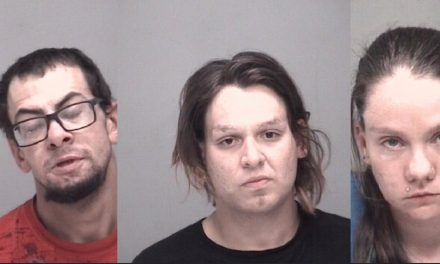 Investigation Leads to Drug and Child Abuse Arrests