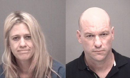 Subjects Arrested for Domestic Violence, Fraud, and Methamphetamine