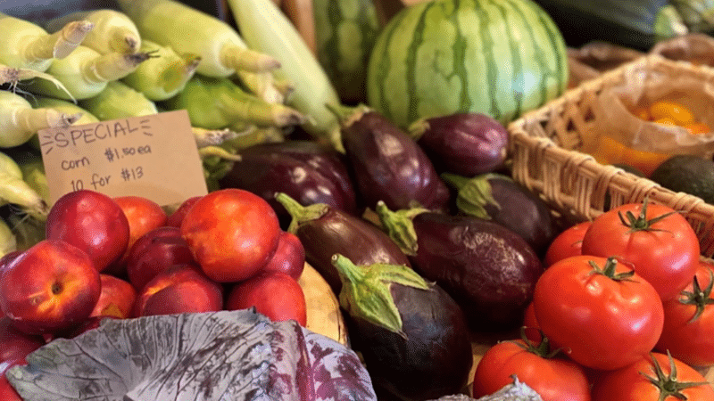 Rosebird Farms CSA and Farm Stand Joins Double Up Food Bucks Program  to Incentivize Shoppers to Make Healthy Choices
