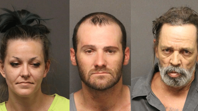 SEARCH WARRANT/ DRUG POSSESSION LEADS TO ARRESTS
