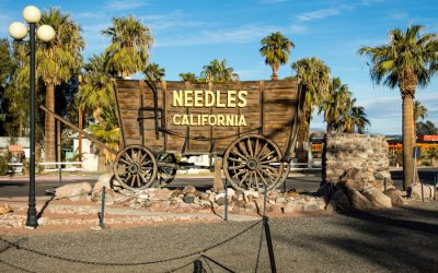 YOU'RE INVITED TO HELP CREATE THE FUTURE OF NEEDLES